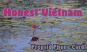 Honest Vietnam Calling Card