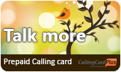 Talk More Calling Card